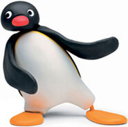 Pingu image