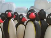 Penguins2.png