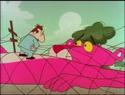 Pink panther trapped in the net 3