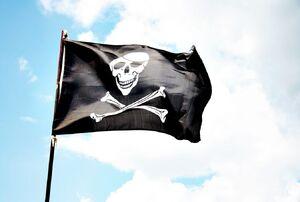 Bandera Portada.jpg