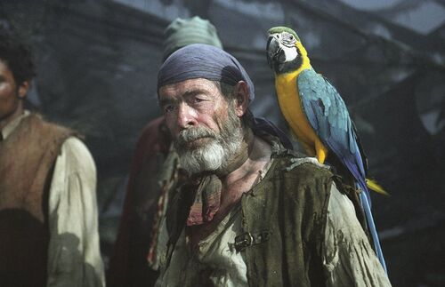 Cotton and his parrot.jpg
