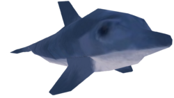 POTCO Dolphin.png