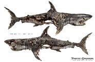 DMTNT Concept Art Ghost Sharks