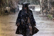 Jack rain