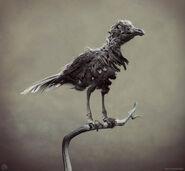 LN-bird 2