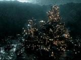 Île des Naufragés
