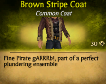 Brown Stripe Coat