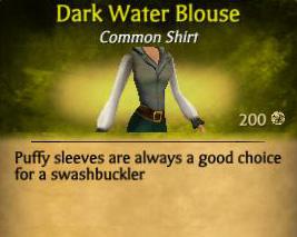 Dark Water Blouse