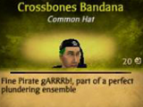 Crossbones Bandana