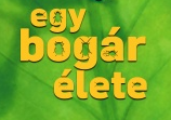 HungarianBugsLife