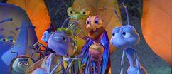 A Bug's Life XIII