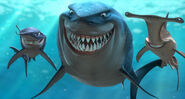 Finding-nemo-bruce-anchor-chum
