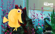 Bubbles-FindingNemo3D
