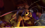 Bar-Mosquito