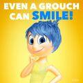 Joy-Grouch