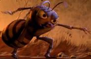 Bouncer-Wasp