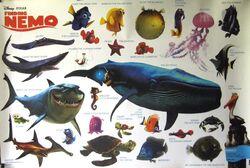 Whale Pixar Wiki Fandom