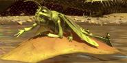 Sunbathing-Grasshopper