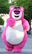 Lots-O-Huggin-Bear Disneyland
