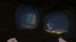 Mountain Forest Cave.jpg