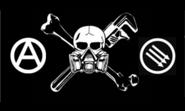 ACI Flag