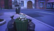 Alley Cat sleeping