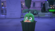 Gekko in the trash