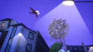 Screenshot (2462)