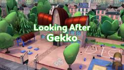 Looking After Gekko Card.png