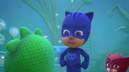 Catboy blames Gekko
