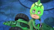 Owo gekko