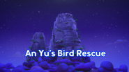 An Yu's Bird Rescue