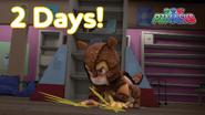 Armadylan's countdown