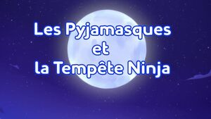 Storm of the Ninja Title Card (French).jpeg