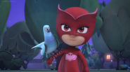 Owlette and Pigeon