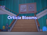 Orticia Blooms