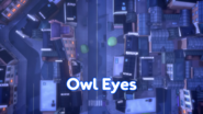 Owl Eyes Title Card