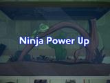 Ninja Power Up
