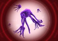 Nox Eternis (патоген сумеречной чумы)