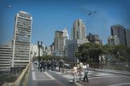 CountryState brazil 3-sharedassets0.assets-478