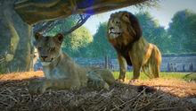 Planet Zoo screenshot 1