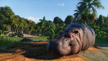 Planet Zoo screenshot 8