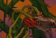 Face plant florauna