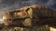Daspletosaurus 2