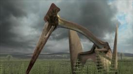 Hatzegopteryx-7