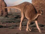 CamptosaurusInfobox