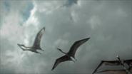 Pterosaur-ep6