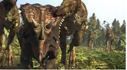 Daspletosaurus 3