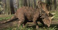 Chasmosaurusinfobox