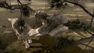 Argentinosaurus3